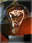 Light Bulb 110 Years Old  online webcam