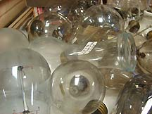 Donated Shelby Bulbs